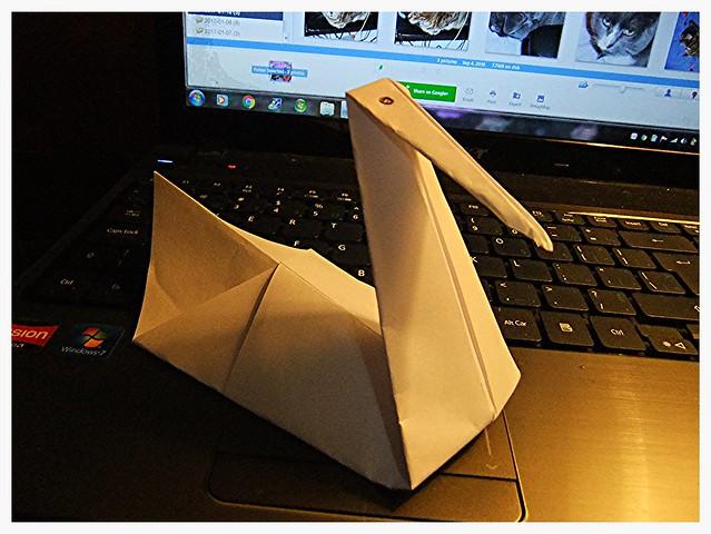 He got an origami, Fujifilm FinePix F70EXR