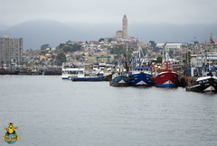 Fishing boats at Coquimbo