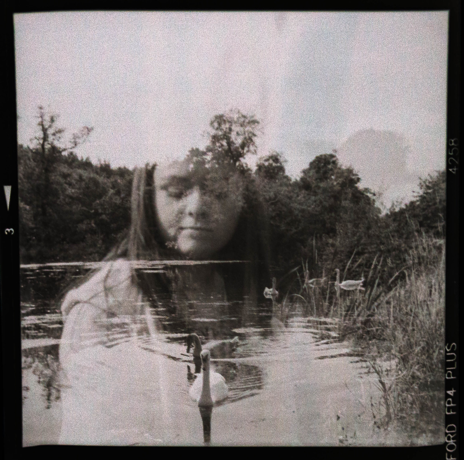 Lubitel Double Exposure
