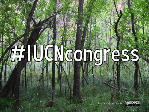 #IUCNCongress is the hashtag for the 2016 World Conservation Congress @clalyc @IUCN @IIFB_indigenous @SEMARNAT_mx