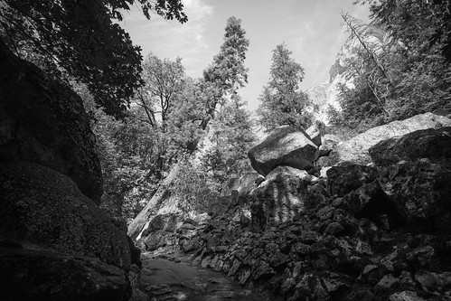 """Image titled """"Rocky Pathway, Yosemite."""""""