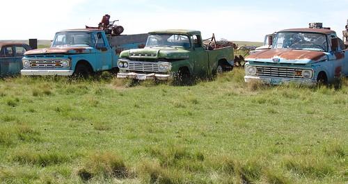 canada ford rust rusty trucks junkyard scrap fordtrucks