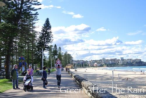 150908h Manly Beach _05