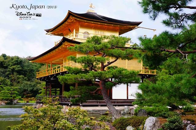 Kyoto - Kinkakuji (Golden Pavilion) 03