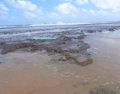 Feliz Sábado ! #BlogAuroradeCinemadeseja #praia #mar #sol #corais ondas #natureza #brazil