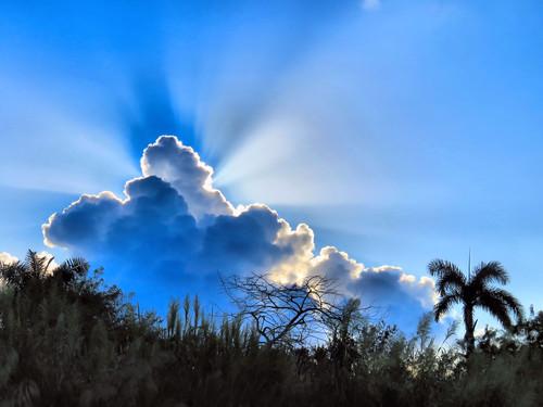 Cumulus cloud HDR 20151109