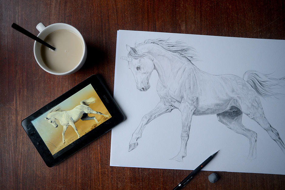 Drawing a Unicorn