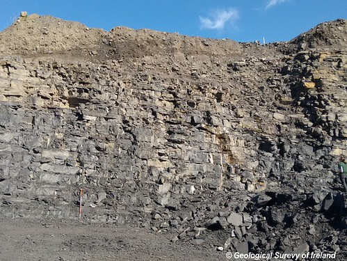 Rock Unit Group: Dinantian Upper Impure Limestones