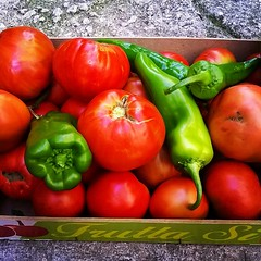 #ortaggi #orto #navelli #pianadinavelli #altopianodinavelli #laquila #abruzzo #italy #agricoltura #food #slowfood