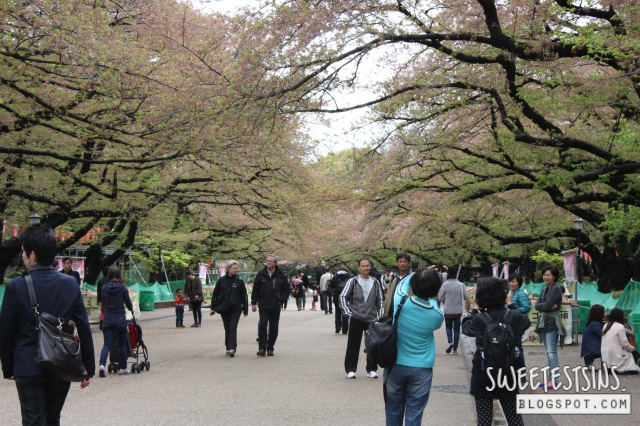 japan tokyo trip ueno park 5