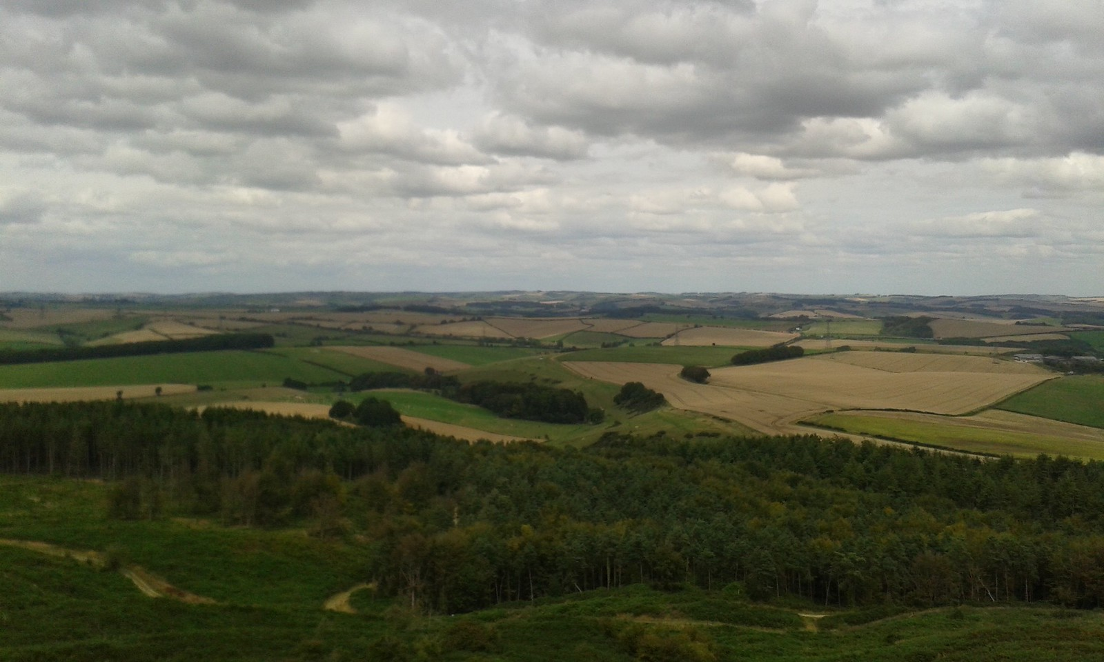 20150816_132912 Lovely views from Hardy Monument