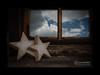 ... e le stelle stanno a guardare