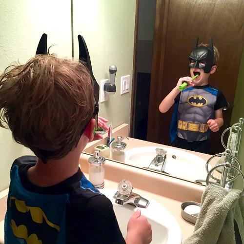 The Dark Knight Brushes