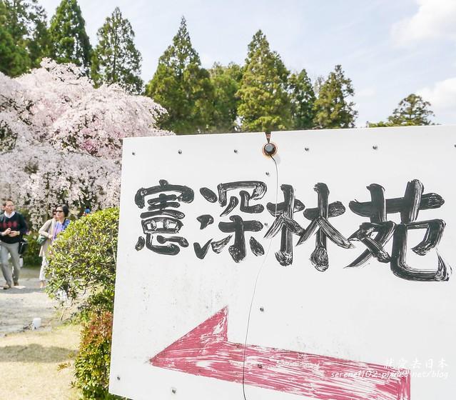 0402D8京都醍醐寺-1160336