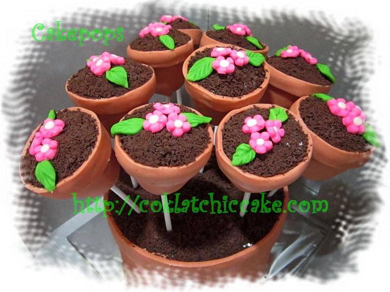 Cake Pot bunga dan pop cake bunga