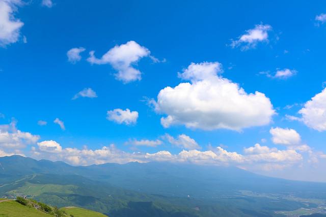 2014-07-26_00490_霧ヶ峰.jpg