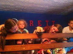 Top bunk pug probs ;)