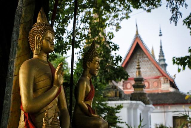 Buddha statues in Wat That Luang, Luang Prabang, laos ルアンパバーン、ワット・タートルアンの仏像