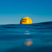 Brighton Swim Area Buoy by lomokev