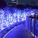 Mexican restaurant and row of trees of illumination, Roppongi midtown Tokyo by sapphire_rouge