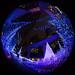 Caretta Illumination2015 #2 by kobaken++