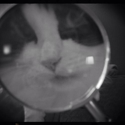 December 6 - I spy