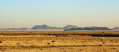 DSC07856 - NAMIBIA 2013