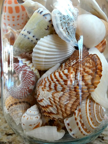 shell collection jar home erjkprunczyk macro