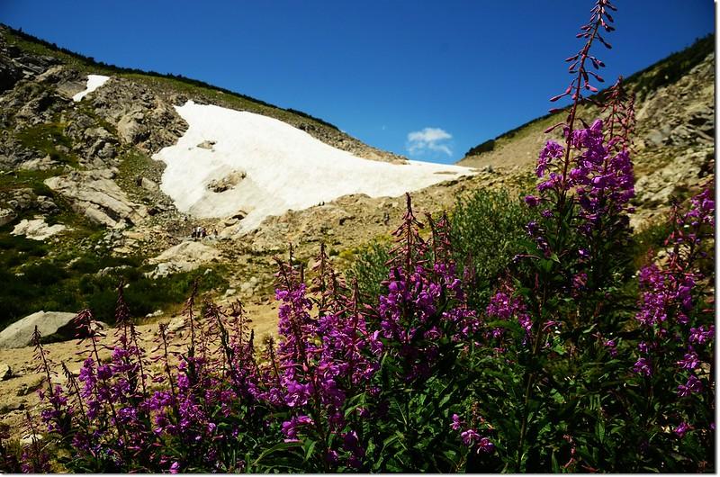 St. Mary's Glacier (19)