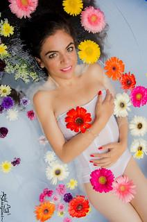 Fantasia floral