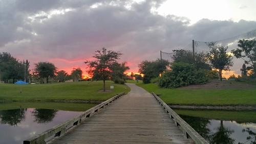 trees sunset sky grass clouds landscape outdoor goldenhour