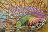 Serpentine Pavilion (2015) by Selgascano by aka Jon Spence