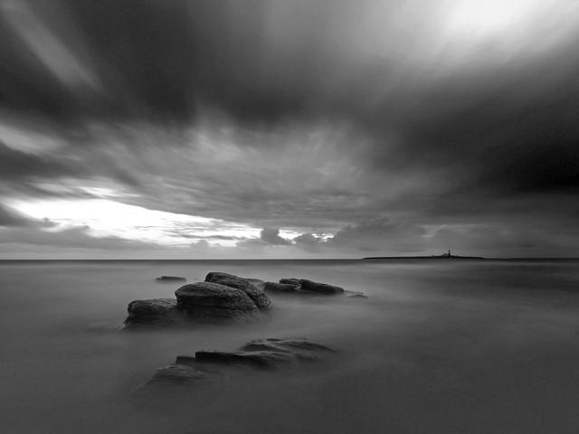 Northumbrian Grey