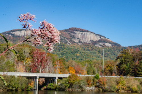 Table Rock with Fall Leaves-001
