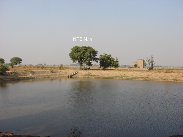 Jhabera - It was happening due to availability and consumption of water by human being.