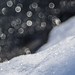 Snowfall [Explored] by Ulmi81