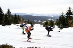 26. ročník běžeckého závodu Jelyman
