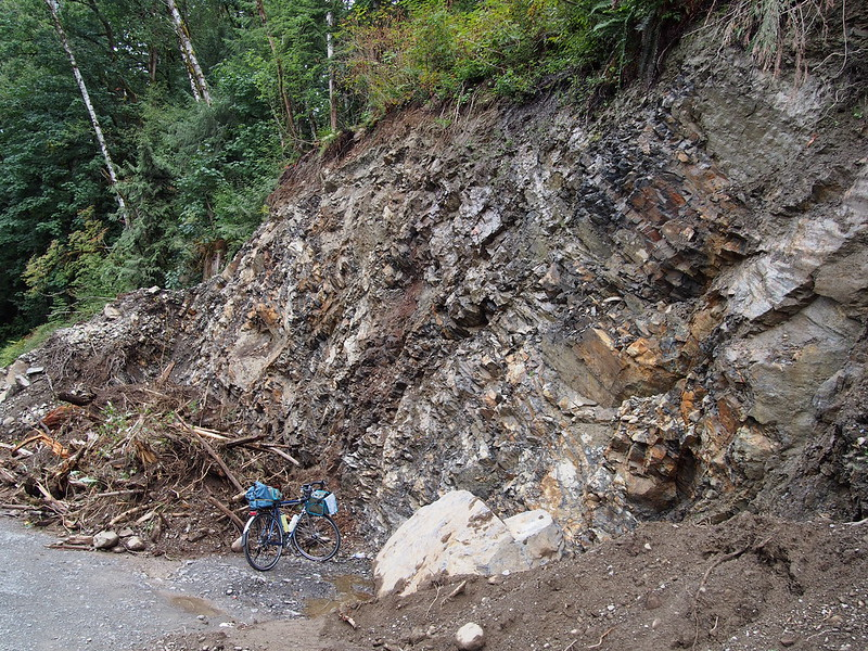 Middle Fork Rd Cutting