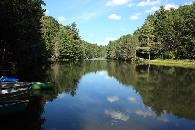 20150822_Seneca_State_Forest_013