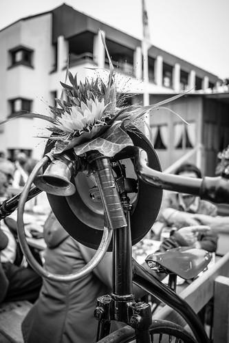 Festa Federale della Musica Popolare #4
