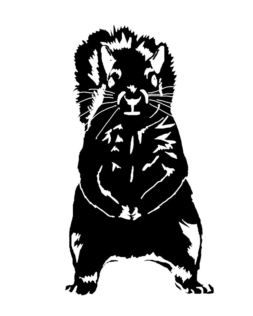 front squirrel stencil black on white