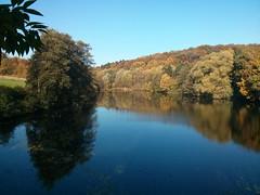 Berger See im Herbst