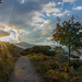 Upper Lake , killarney by Denis Mc Carthy