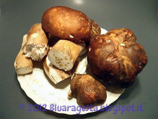 Reginette ai funghi porcini da l 39 aragosta blu su akkiapparicette - Funghi secchi a bagno ...