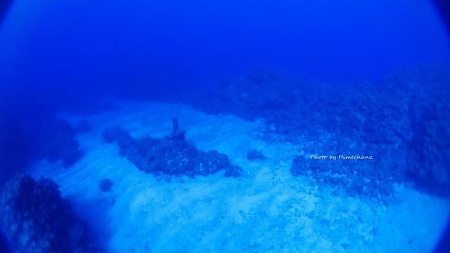 久しぶりに潜水艦見に行ってきましたw