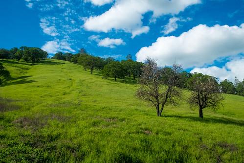 1855 1855mm apsc america aqua bayarea berkeley california californiastate ceu ciel cielo clayton cloud clouds color contracosta contracostacounty danville diablorange eeuu exrプロセッサーpro earth eastbay estadosunidos fotografíadepaisaje fuji fujixe1 fujifilm fujinon fujinonxf1855mmf284rlmois green hike hiking hikingtrail hill hoakỳ landscape landscapephotography landschaftsfotografie lens mirrorless mirrorlesscamera mountdiablo mountdiablostatepark mountain nature norcal northamerica northerncalifornia oakland outdoor paisaje photography sfbay sanfrancisco sanfranciscobayarea sanpancho sky trail travel traveling travels trekking usa water westcoast westoakland xe1 xtranscmossensor