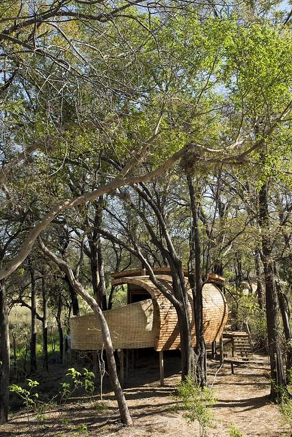 150903_Sandibe_Okavango_Safari_Lodge_12