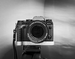 Project 365-Fuji Style