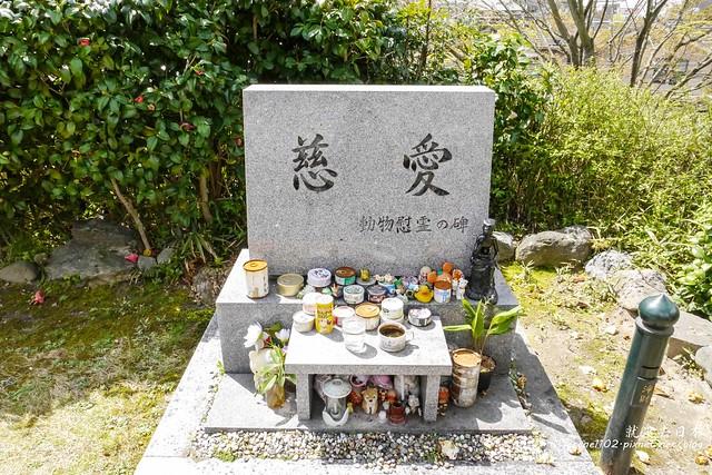 0403D9宇治、清水寺-1160907