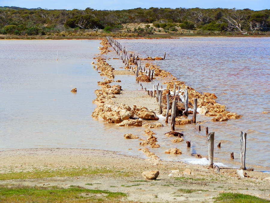 Jetty Ruins, Coorong Loop Track, Salt Creek